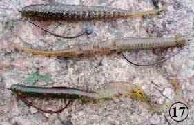 Texas Rig (Техасская оснастка) Силиконовые черви - оснастка, ловля