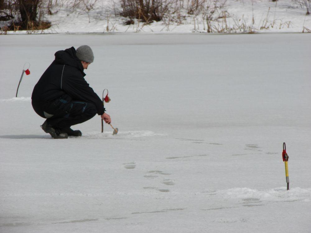 Ловля щуки зимой на живца: жерлицы и поплавочная ловля