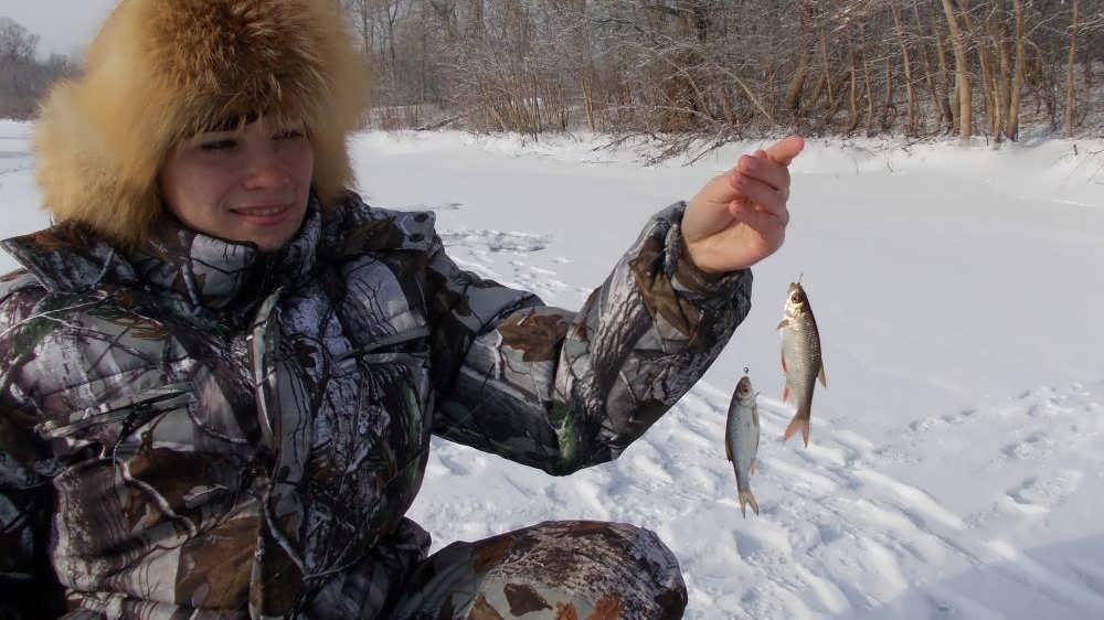 Ловля щуки зимой на жерлицы   Какой живец лучше